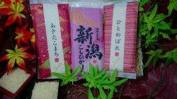 画像1: 日本の銘柄米コシヒカリ・ひとめぼれ・あきたこまち 三点セット