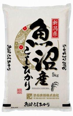 画像1: 新潟南魚沼産コシヒカリ 真空包装5キロ